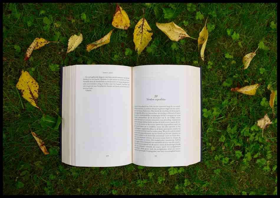 Aprendiendo a ser un escritor