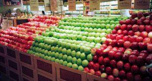 Shopify aumentar las ventas de tu tienda